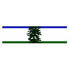 Flag Of Cascadia Satin Scarf (oblong)