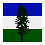 Flag of Cascadia Medium Glasses Cloth Front