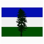 Flag of Cascadia Large Glasses Cloth (2-Side) Back