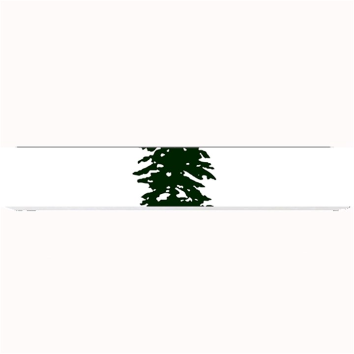 Flag of Cascadia Small Bar Mats