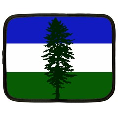 Flag Of Cascadia Netbook Case (large) by abbeyz71