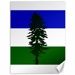 Flag Of Cascadia Canvas 36  X 48   by abbeyz71