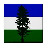 Flag of Cascadia Tile Coasters Front