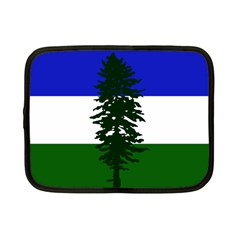 Flag Of Cascadia Netbook Case (small)  by abbeyz71