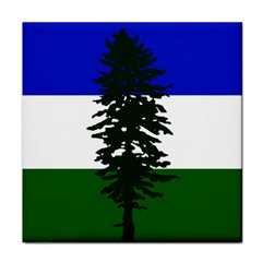 Flag Of Cascadia Face Towel by abbeyz71