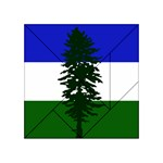 Flag of Cascadia Acrylic Tangram Puzzle (4  x 4 ) Front