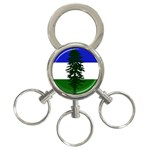 Flag of Cascadia 3-Ring Key Chains Front