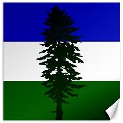 Flag Of Cascadia Canvas 16  X 16   by abbeyz71