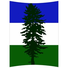 Flag Of Cascadia Back Support Cushion by abbeyz71