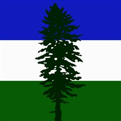 Flag 0f Cascadia Canvas 12  X 12   by abbeyz71