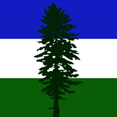 Flag 0f Cascadia Magic Photo Cubes by abbeyz71