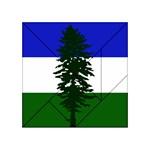 Flag 0f Cascadia Acrylic Tangram Puzzle (4  x 4 ) Front