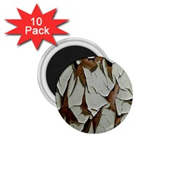 Dry Nature Pattern Background 1 75  Magnets (10 Pack)