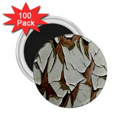 Dry Nature Pattern Background 2 25  Magnets (100 Pack)