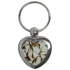 Dry Nature Pattern Background Key Chains (heart)