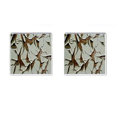 Dry Nature Pattern Background Cufflinks (square)