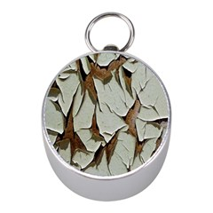 Dry Nature Pattern Background Mini Silver Compasses