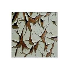 Dry Nature Pattern Background Satin Bandana Scarf