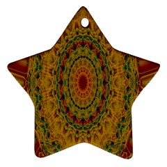 India Mystic Background Ornamental Ornament (star)
