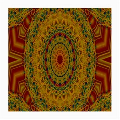 India Mystic Background Ornamental Medium Glasses Cloth (2 Side) by Nexatart