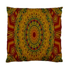 India Mystic Background Ornamental Standard Cushion Case (two Sides) by Nexatart