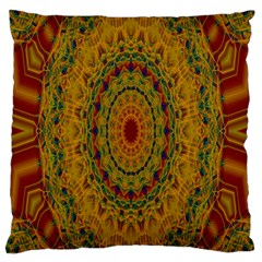 India Mystic Background Ornamental Large Cushion Case (two Sides)