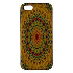 India Mystic Background Ornamental Iphone 5s/ Se Premium Hardshell Case