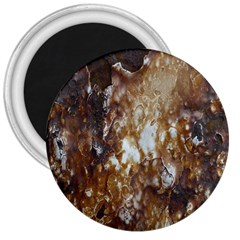Rusty Texture Pattern Daniel 3  Magnets by Nexatart