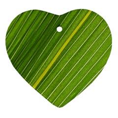 Leaf Plant Nature Pattern Ornament (heart)