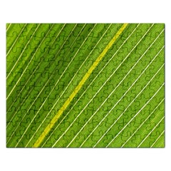 Leaf Plant Nature Pattern Rectangular Jigsaw Puzzl
