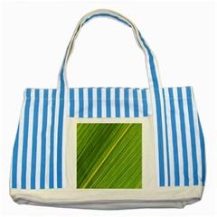Leaf Plant Nature Pattern Striped Blue Tote Bag
