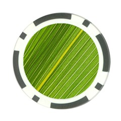 Leaf Plant Nature Pattern Poker Chip Card Guard