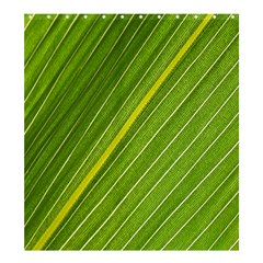 Leaf Plant Nature Pattern Shower Curtain 66  X 72  (large)
