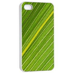 Leaf Plant Nature Pattern Apple Iphone 4/4s Seamless Case (white)