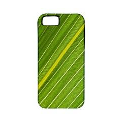 Leaf Plant Nature Pattern Apple Iphone 5 Classic Hardshell Case (pc+silicone)