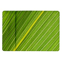 Leaf Plant Nature Pattern Samsung Galaxy Tab 10 1  P7500 Flip Case
