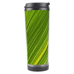 Leaf Plant Nature Pattern Travel Tumbler