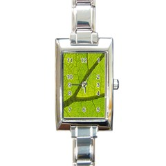 Green Leaf Plant Nature Structure Rectangle Italian Charm Watch