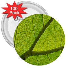 Green Leaf Plant Nature Structure 3  Buttons (100 Pack)