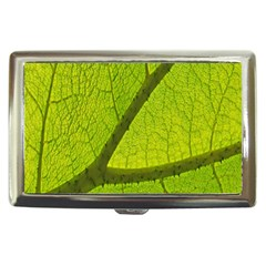 Green Leaf Plant Nature Structure Cigarette Money Cases by Nexatart