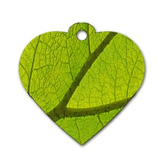 Green Leaf Plant Nature Structure Dog Tag Heart (one Side) by Nexatart