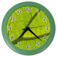 Green Leaf Plant Nature Structure Color Wall Clocks