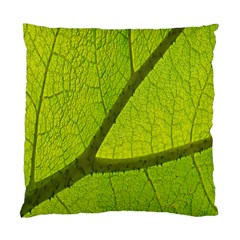 Green Leaf Plant Nature Structure Standard Cushion Case (one Side)