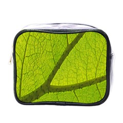 Green Leaf Plant Nature Structure Mini Toiletries Bags