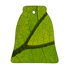 Green Leaf Plant Nature Structure Bell Ornament (two Sides)