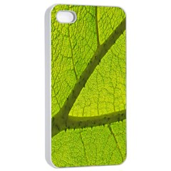 Green Leaf Plant Nature Structure Apple Iphone 4/4s Seamless Case (white)