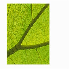 Green Leaf Plant Nature Structure Large Garden Flag (two Sides)