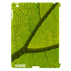 Green Leaf Plant Nature Structure Apple Ipad 3/4 Hardshell Case (compatible With Smart Cover) by Nexatart