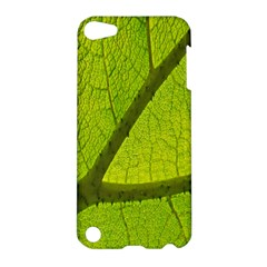 Green Leaf Plant Nature Structure Apple Ipod Touch 5 Hardshell Case