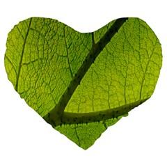 Green Leaf Plant Nature Structure Large 19  Premium Heart Shape Cushions